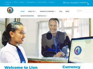 Lion International Bank   ethioconstruction net
