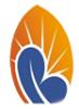 Berhan Insurance logo
