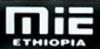 Mesfin Industrial Engineering P.L.C. logo